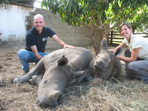 Couple to run, cycle and ride 10 000km for Rhinos