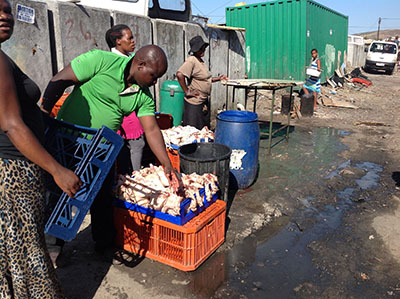 A local business man is seen selling plucked chickens behind blocked toilets in Ethembeni informal settlement. Running beneath and around the crates in which he displays his chicken is grey water contaminated with raw sewage. Photo: Peter Luhanga/WCN
