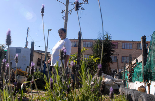 Putting the lavender back into Lavender Hill