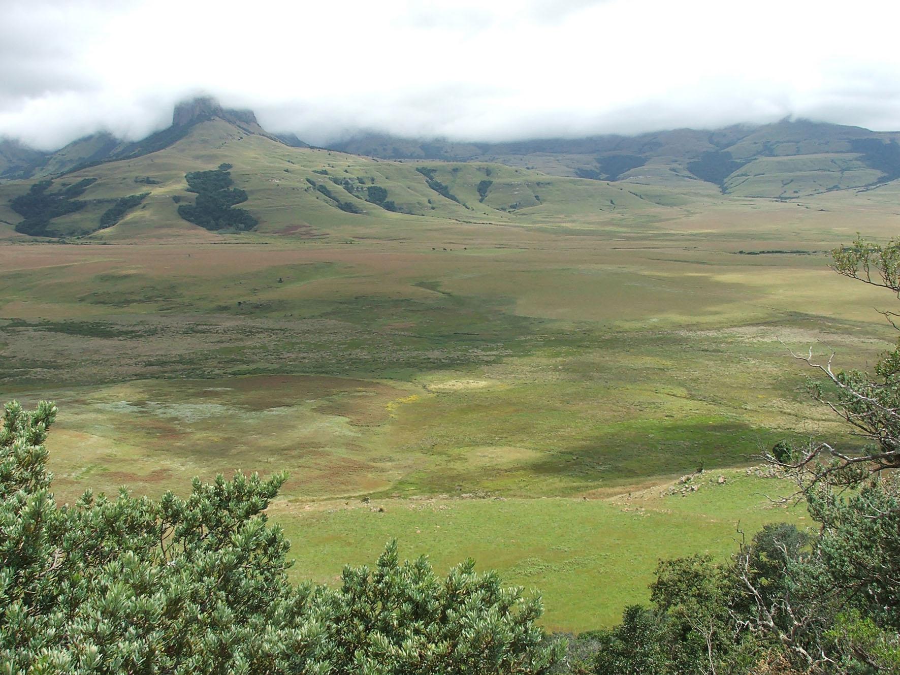 Protected environment victory for SA