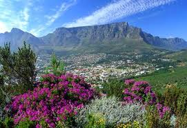 Residents and businesses give Cape Town the thumbs up