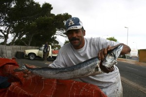 Locally sold snoek is flown in from New Zealand